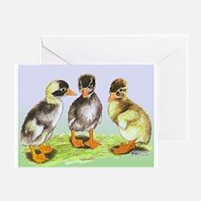 Runner Duck Ducklings Greeting Card