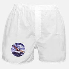 Pteranodon 2 Boxer Shorts