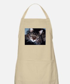 Bright Eyes BBQ Apron