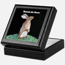 Flemmish Rabbit Keepsake Box