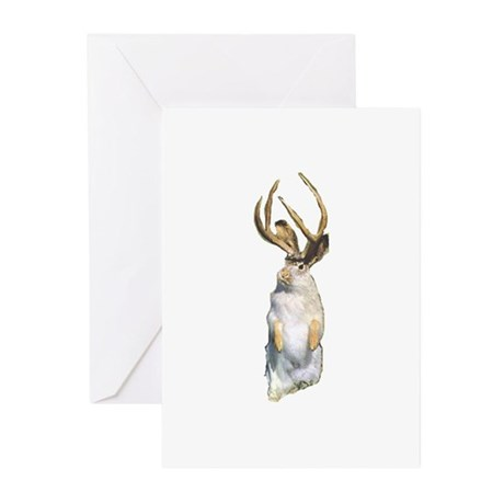 Jackalope Greeting Cards (Pk of 10)