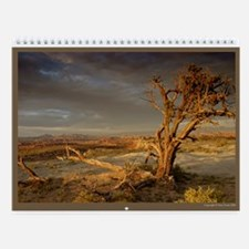 United States Images Wall Calendar DArcy Evans