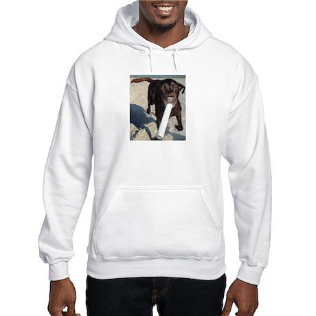 Retrieve Life Hooded Sweatshirt