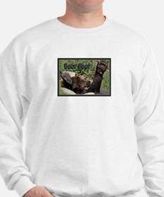 Bear Feet Sweatshirt