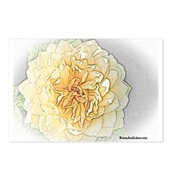 Olde Yellow rose Postcards (Package of 8)