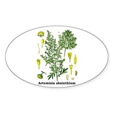 Absinthe Wormwood Oval Decal