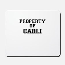 Property of CARLI Mousepad