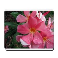 Pink Oleander Mousepad