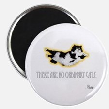 No Ordinary Cats Magnet