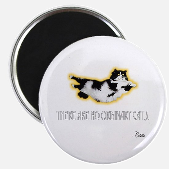No Ordinary Cats Magnet