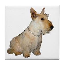 Scottish Terrier Blonde Tile Coaster