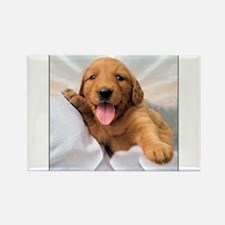 Happy Golden Retriever Puppy Rectangle Magnet