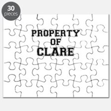 Property of CLARE Puzzle