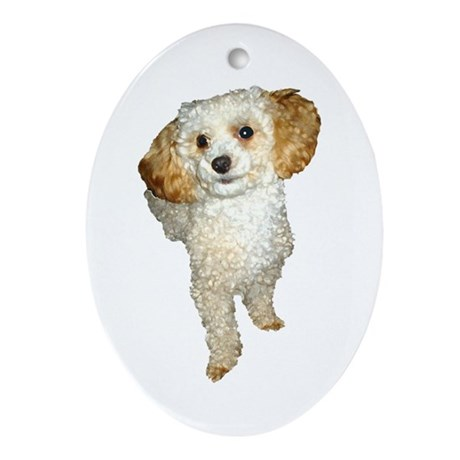 Apricot Poodle Painting Oval Ornament