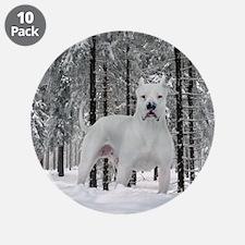 "Winter 3.5"" Button (10 pack)"