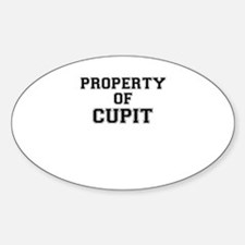 Property of CUPIT Decal