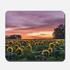 Kansas Sunflower Sunrise Mousepad