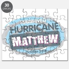 Hurricane Matthew Puzzle