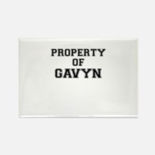 Property of GAVYN Magnets