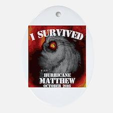 Funny Matthew Oval Ornament