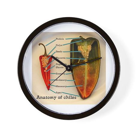 chile anatomy Wall Clock