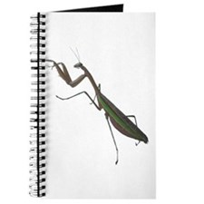 preying mantis Journal