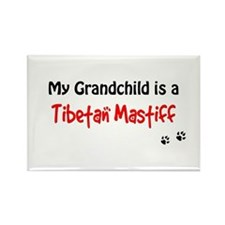 Tibetan Mastiff Grandchild Rectangle Magnet