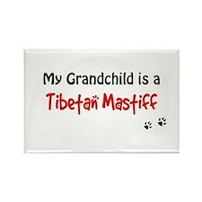 Tibetan Mastiff Grandchild Rectangle Magnet