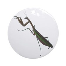 preying mantis Ornament (Round)