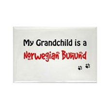 Norwegian Buhund Grandchild Rectangle Magnet