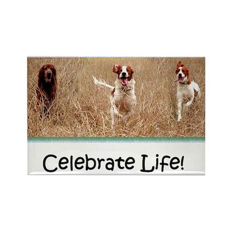 IRWS Celebrate Life! Rectangle Magnet