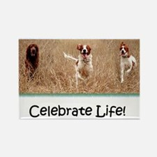 IRWS Celebrate Life! Rectangle Magnet