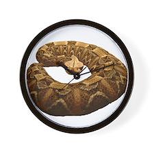 gaboon viper Wall Clock