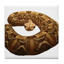 gaboon viper Tile Coaster