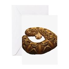 gaboon viper Greeting Card