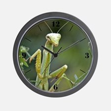 Mantis 475 Wall Clock