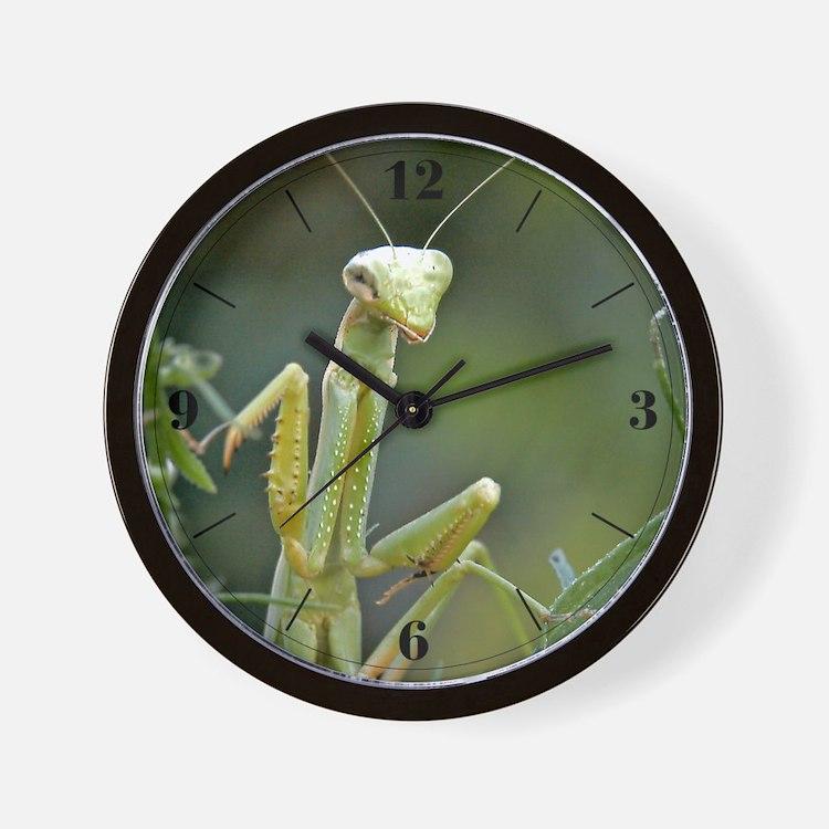 Mantis 475 Wall Clock