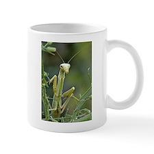 Mantis 475 Mug