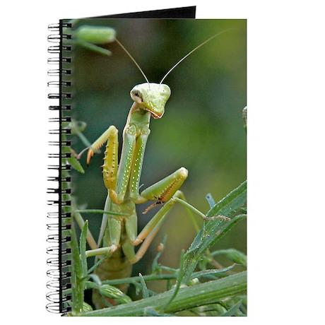 Mantis 475 Journal