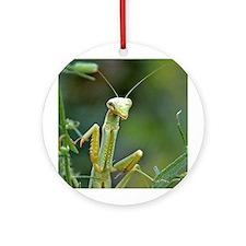 Mantis 475 Ornament (Round)