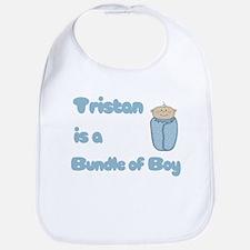 Tristan is a Bundle of Boy Bib