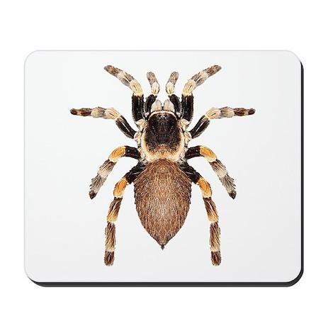 Tarantula Mousepad