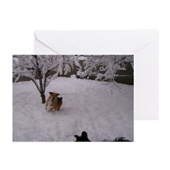 Playing in the Snow Greeting Cards (Pk of 20)