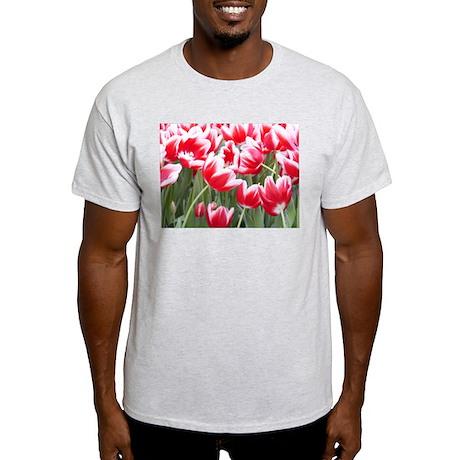Red Tulips Photo Ash Grey T-Shirt