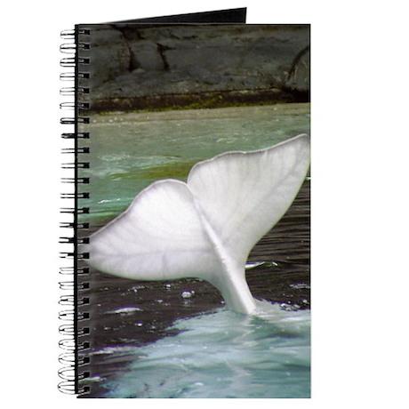 Beluga Fluke Journal