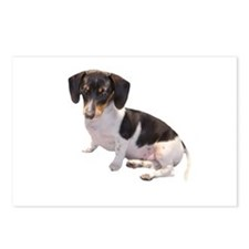 Black & White Doxie Postcards (Package of 8)