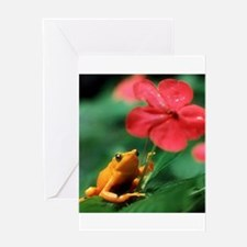 Unique Tree frog Greeting Card