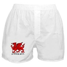 Y Ddraig Goch in Black and Red with Slogan Boxer S