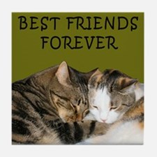 BFF Cats Snuggling Tile Coaster