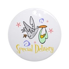 Special Delivery 2 Ornament (Round)